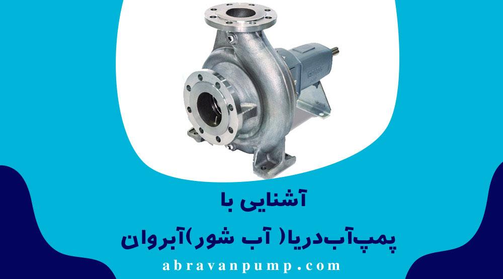 پمپ آب دریا یا همان شور کاربرد های زیادی در صنایعی که با سدیم درگیر هستند دارد.